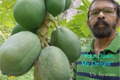 Your-Dawn-My-Delight-Jayaram